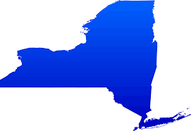 blue outline of NYS